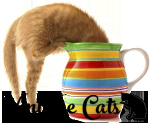 Vintage-Cats-kitten-in-jug