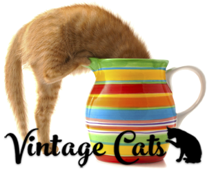 Vintage-Cats-kitten-in-jug